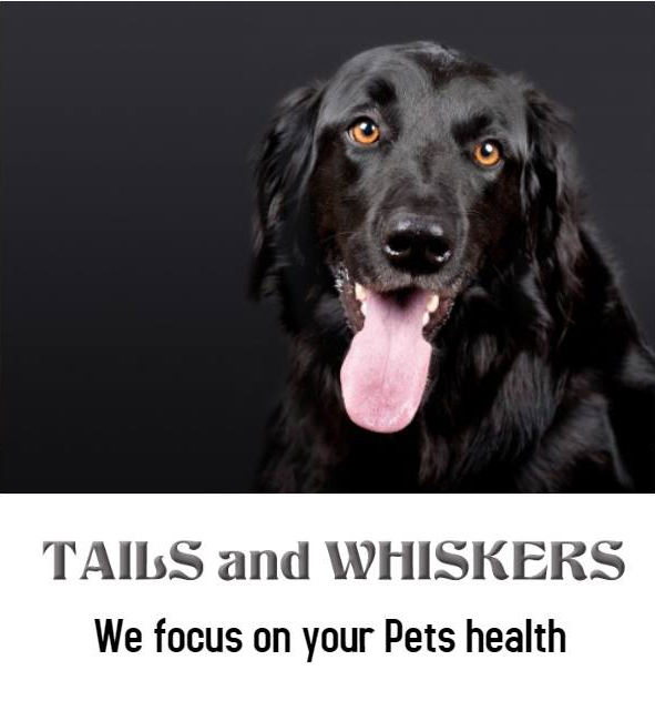 Tails and Whiskers Pet store