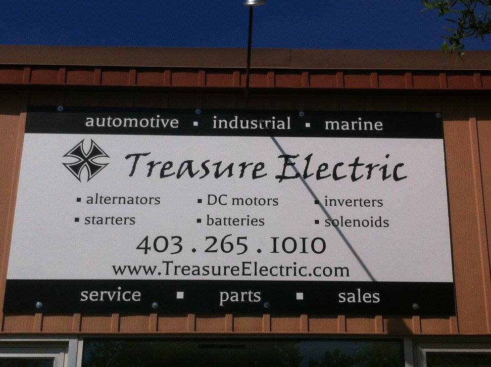 Treasure Auto Electric